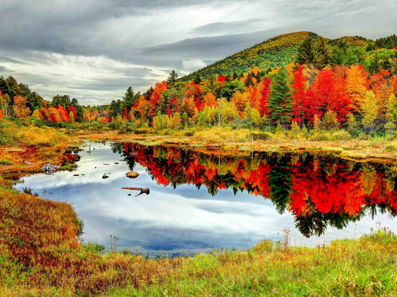 White Mountains, New Hampshire - Fall Leaves