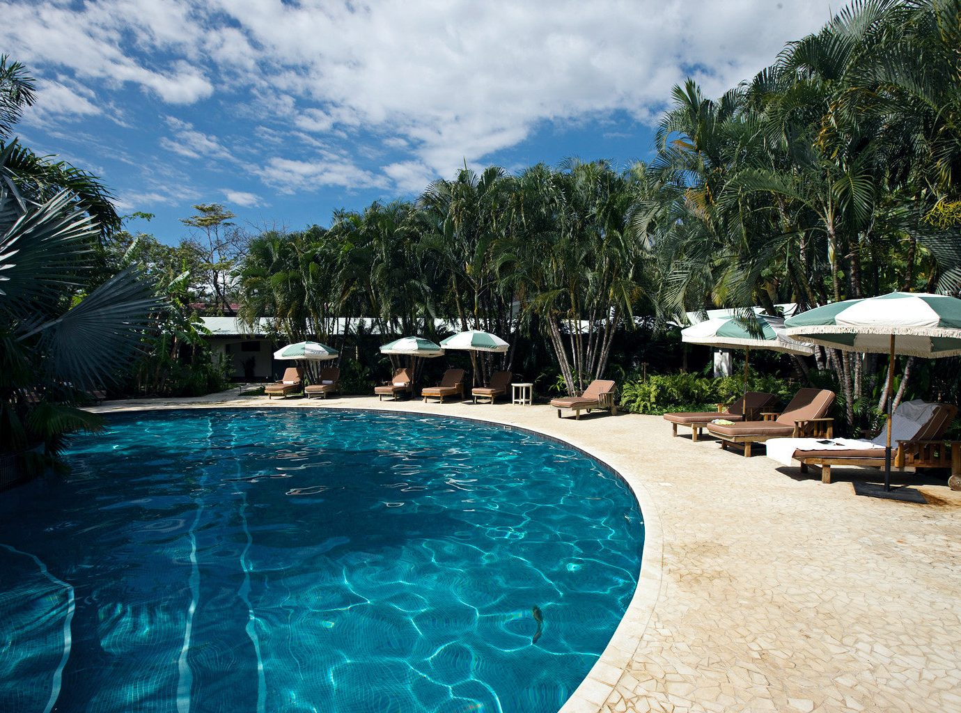 Pool at Harmony Hotel in Costa RIca