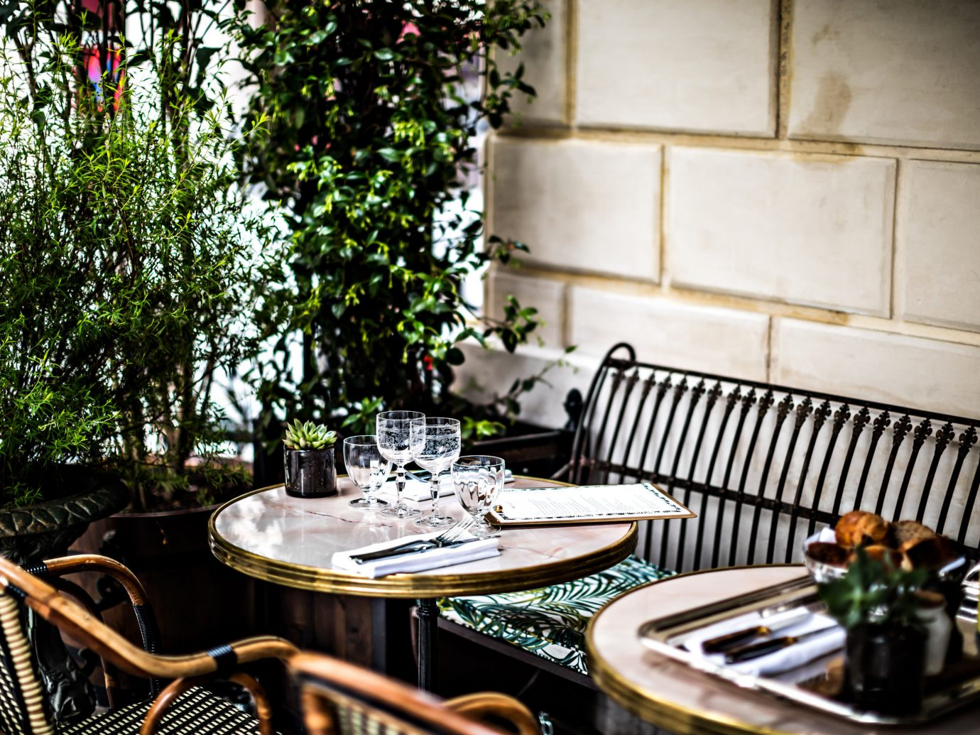 Boutique Hotels Hotels tree room restaurant estate meal home interior design backyard table dining table