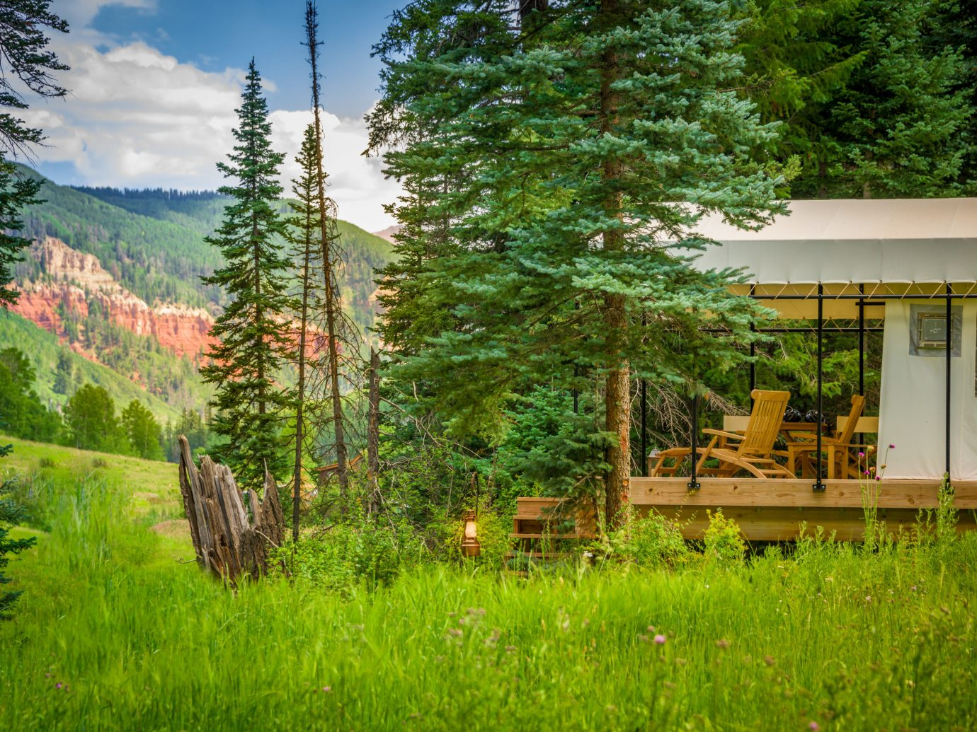 Glamping Outdoors + Adventure Trip Ideas Weekend Getaways tree grass outdoor wilderness ecosystem green field botany plant woody plant meadow woodland rural area landscape flower estate Garden autumn biome lush house Forest wooded