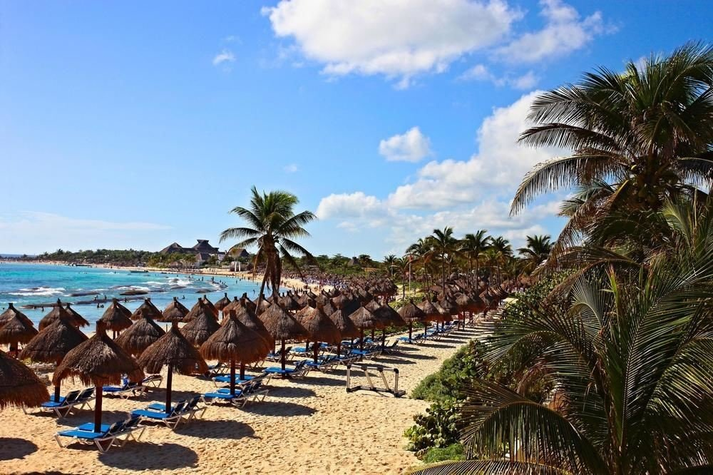 All-Inclusive Resorts Family Travel Hotels sky outdoor Beach tree palm ground palm tree arecales Coast Resort tourism tropics people Sea sandy vacation plant lined caribbean Ocean shore shade sunny line day several