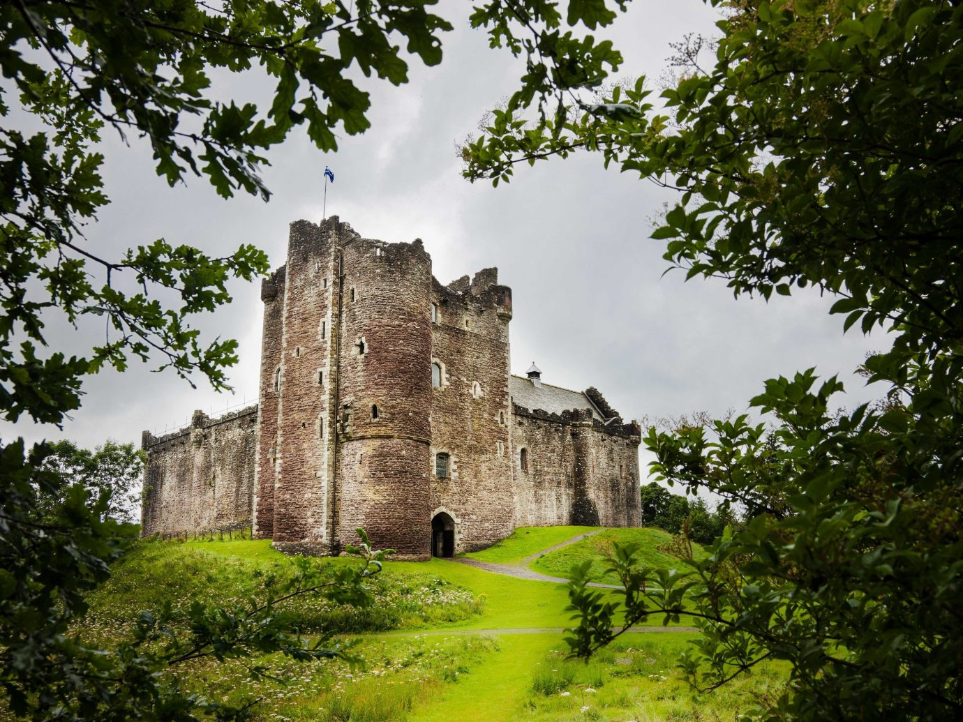 Offbeat tree outdoor building castle sky Ruins château medieval architecture grass national trust for places of historic interest or natural beauty fortification historic site stone estate old history stately home archaeological site landscape abbey surrounded lush