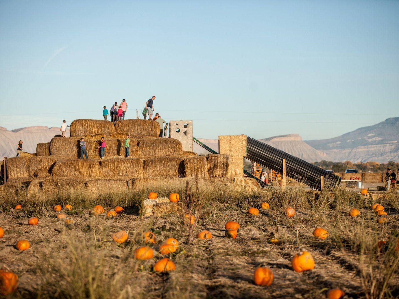 Trip Ideas sky outdoor natural environment orange landscape rock flower Desert mountain autumn terrain valley aeolian landform