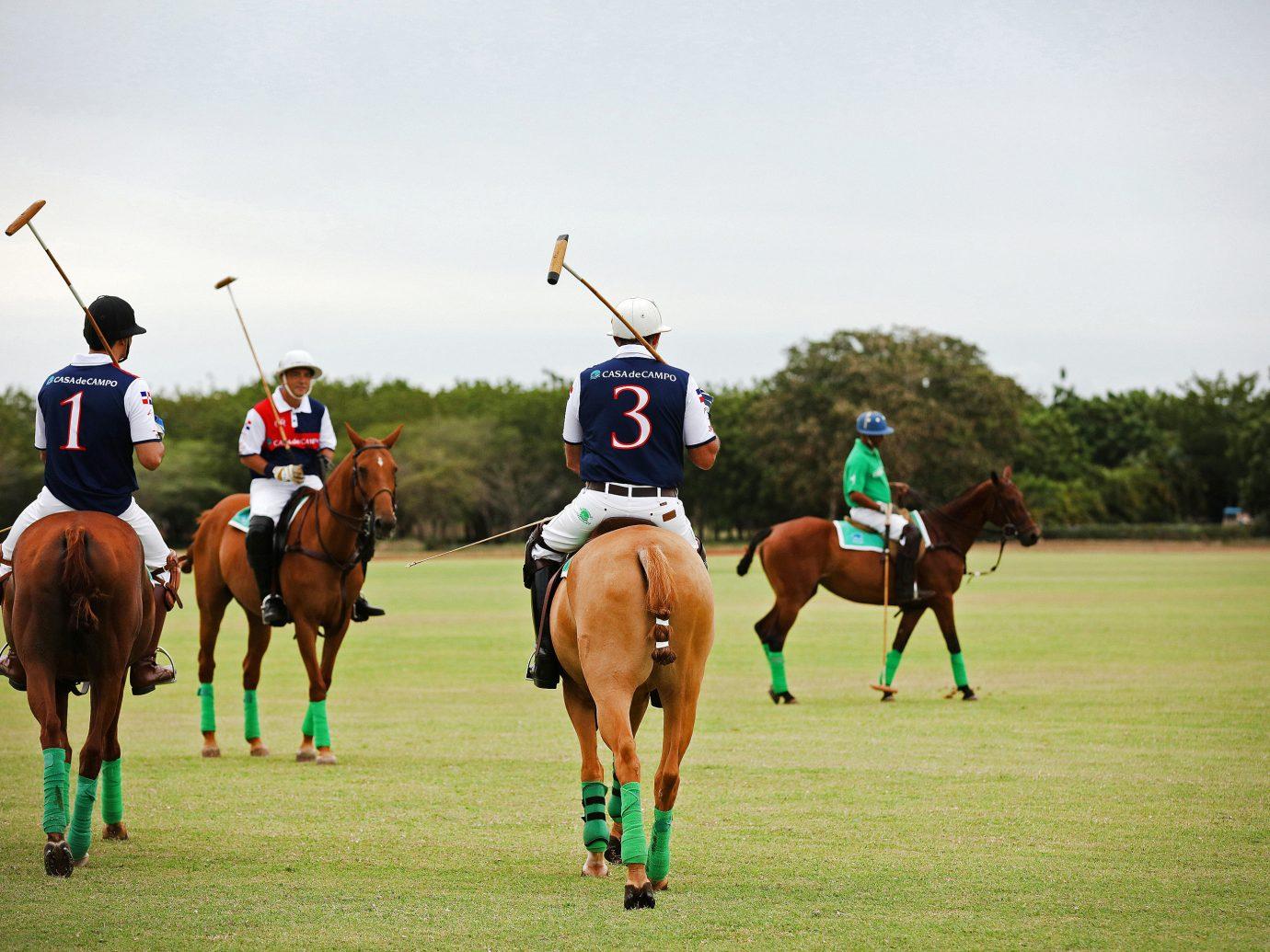 Polo Players In Dominican Republic