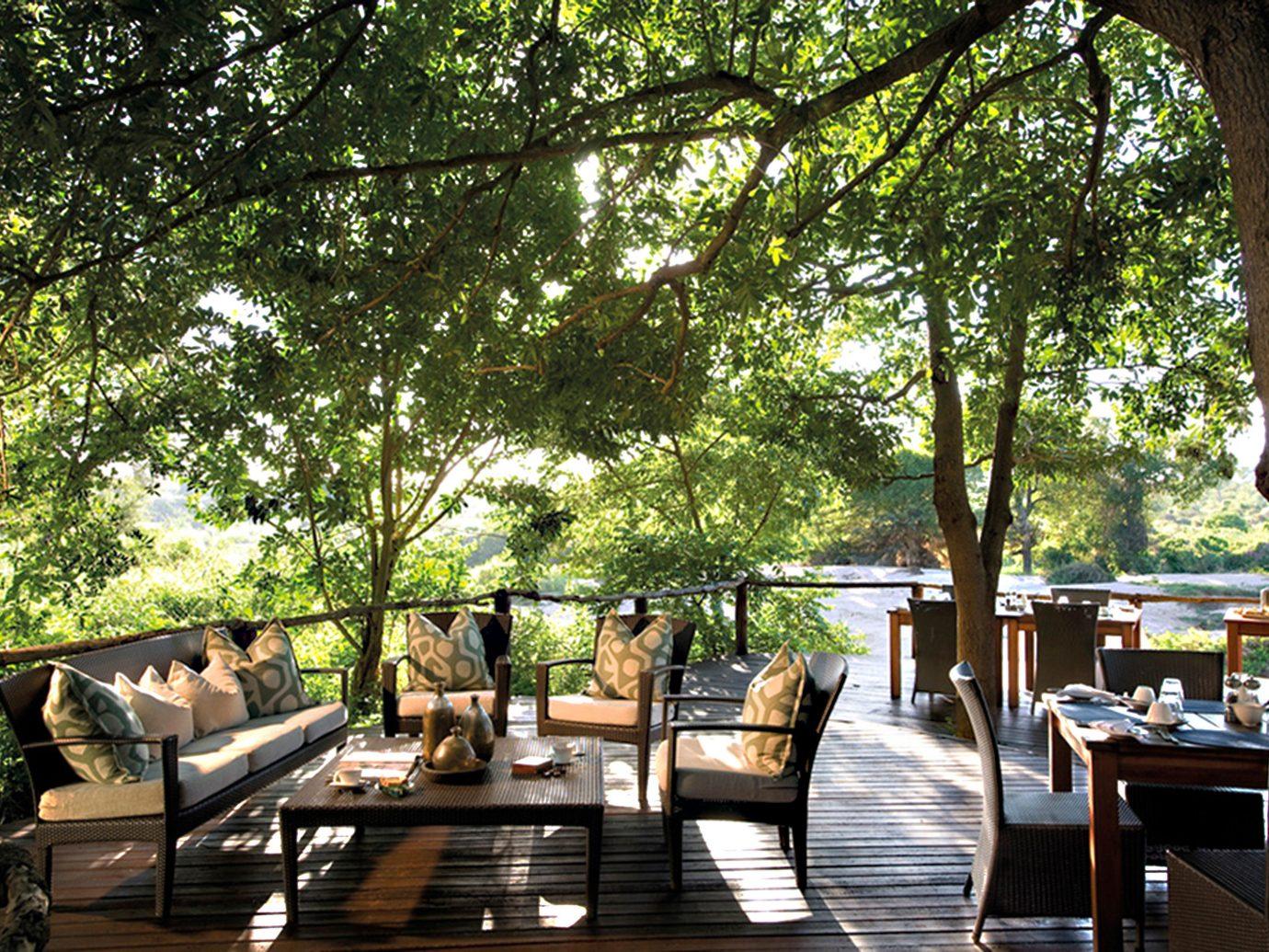 Trip Ideas tree table estate backyard Garden outdoor structure Courtyard flower Resort furniture wood several
