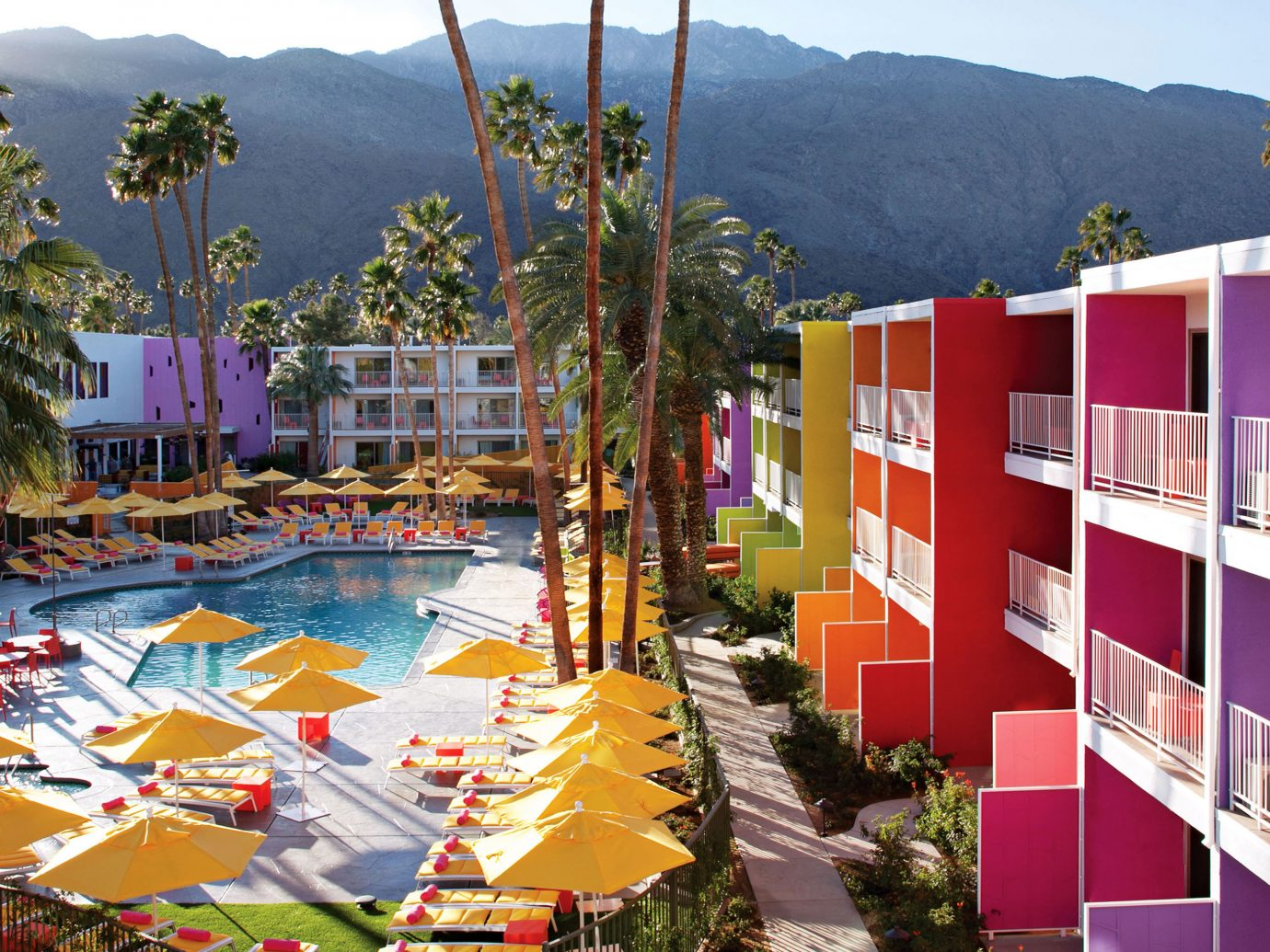 Aerial view of the pool at Saguaro Palm Springs in Palm Springs