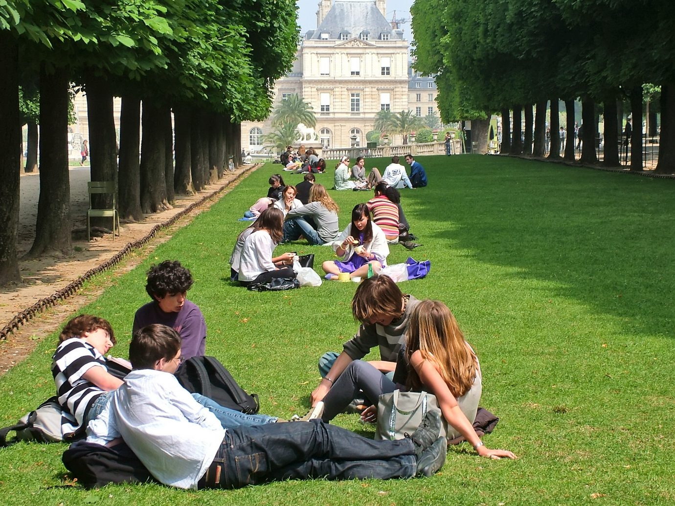 Romance Trip Ideas grass outdoor tree person people park lawn