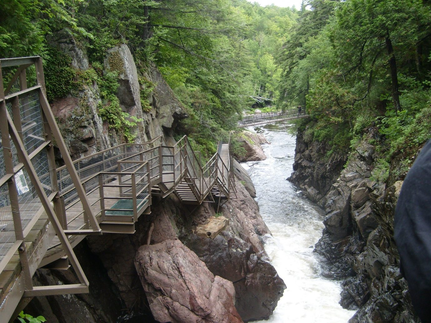 Boutique Hotels Hotels Outdoors + Adventure Trip Ideas Weekend Getaways tree outdoor water nature reserve watercourse stream water resources Nature River creek rock state park rapid water feature Forest ravine Jungle landscape tributary wood surrounded