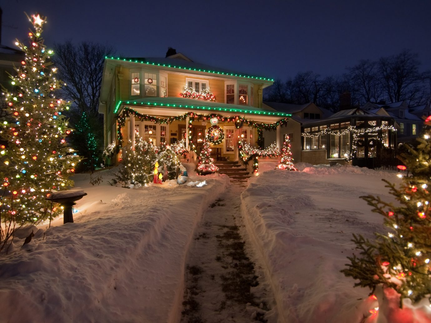 Offbeat outdoor tree sky Christmas christmas decoration Christmas tree christmas lights holiday event light