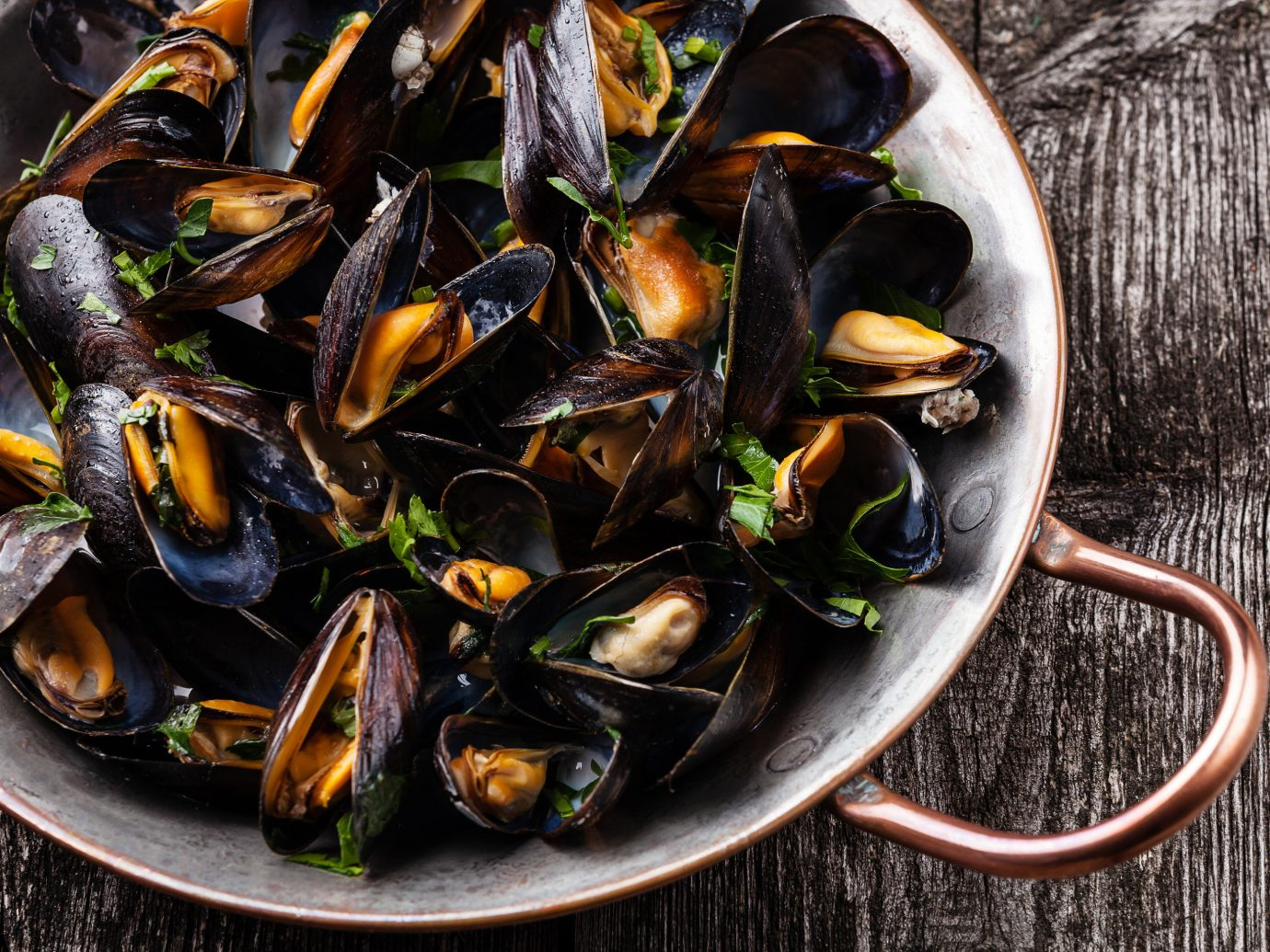 Food + Drink food mussel invertebrate Seafood animal source foods fish clams oysters mussels and scallops molluscs