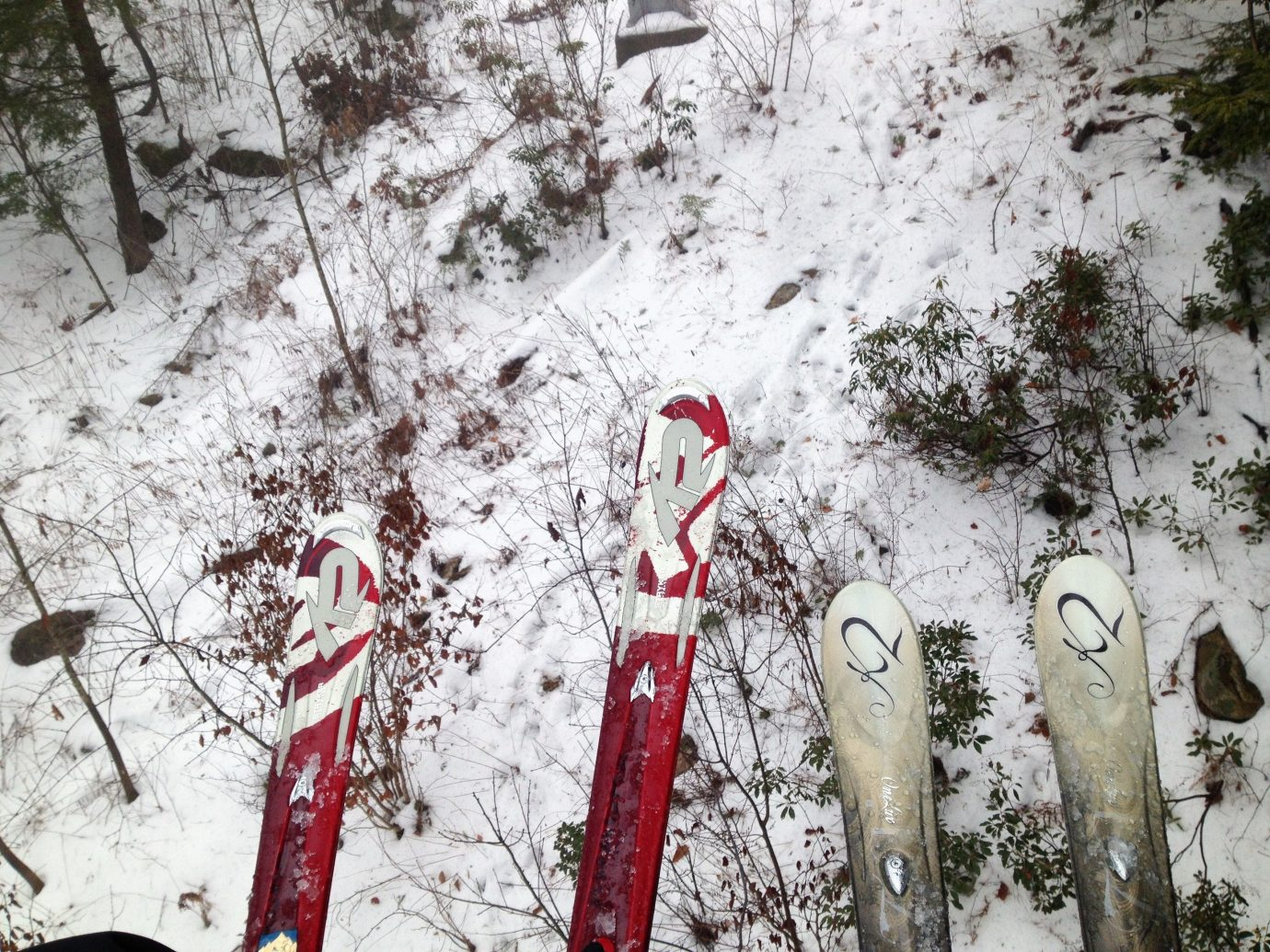 Trip Ideas snow tree outdoor Winter weather geological phenomenon season freezing branch red spring skiing slope