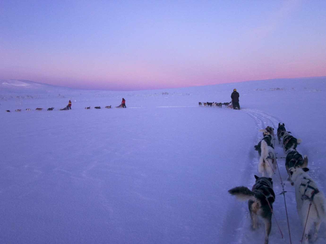 Adventure Trip Ideas sky outdoor snow water Dog Nature arctic weather mountain Winter morning Sea ice Lake shore