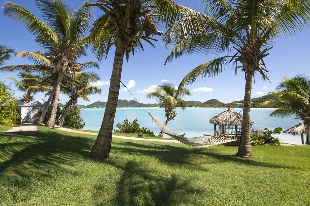All-Inclusive Resorts tree grass outdoor sky palm plant Resort property palm tree arecales green tropics grassy estate real estate caribbean leisure coconut vacation landscape Villa lush shade land