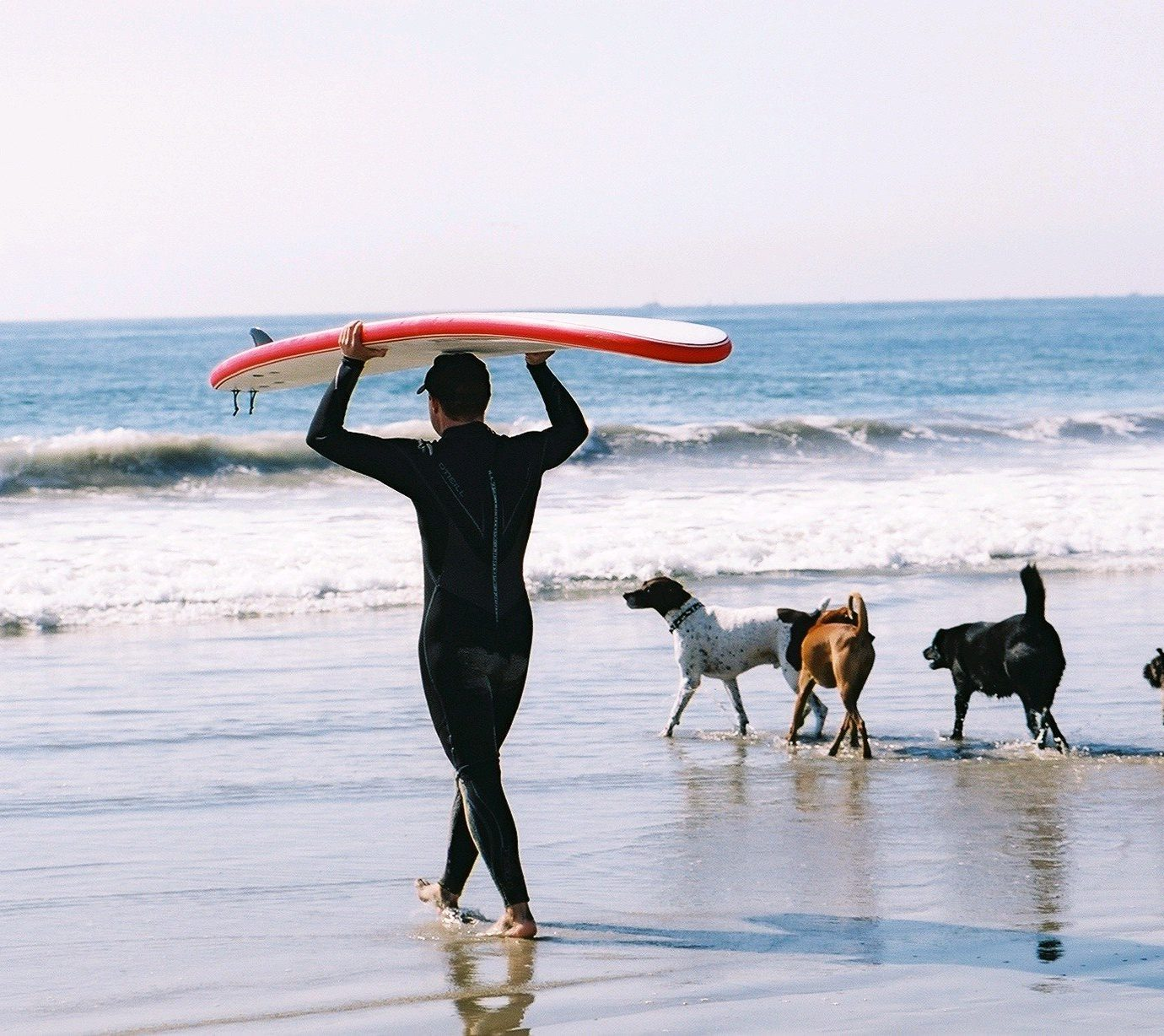 Hotels Offbeat water sky Beach outdoor Ocean Sea Coast shore vacation surfboard surfing surfing equipment and supplies wave sports surface water sports