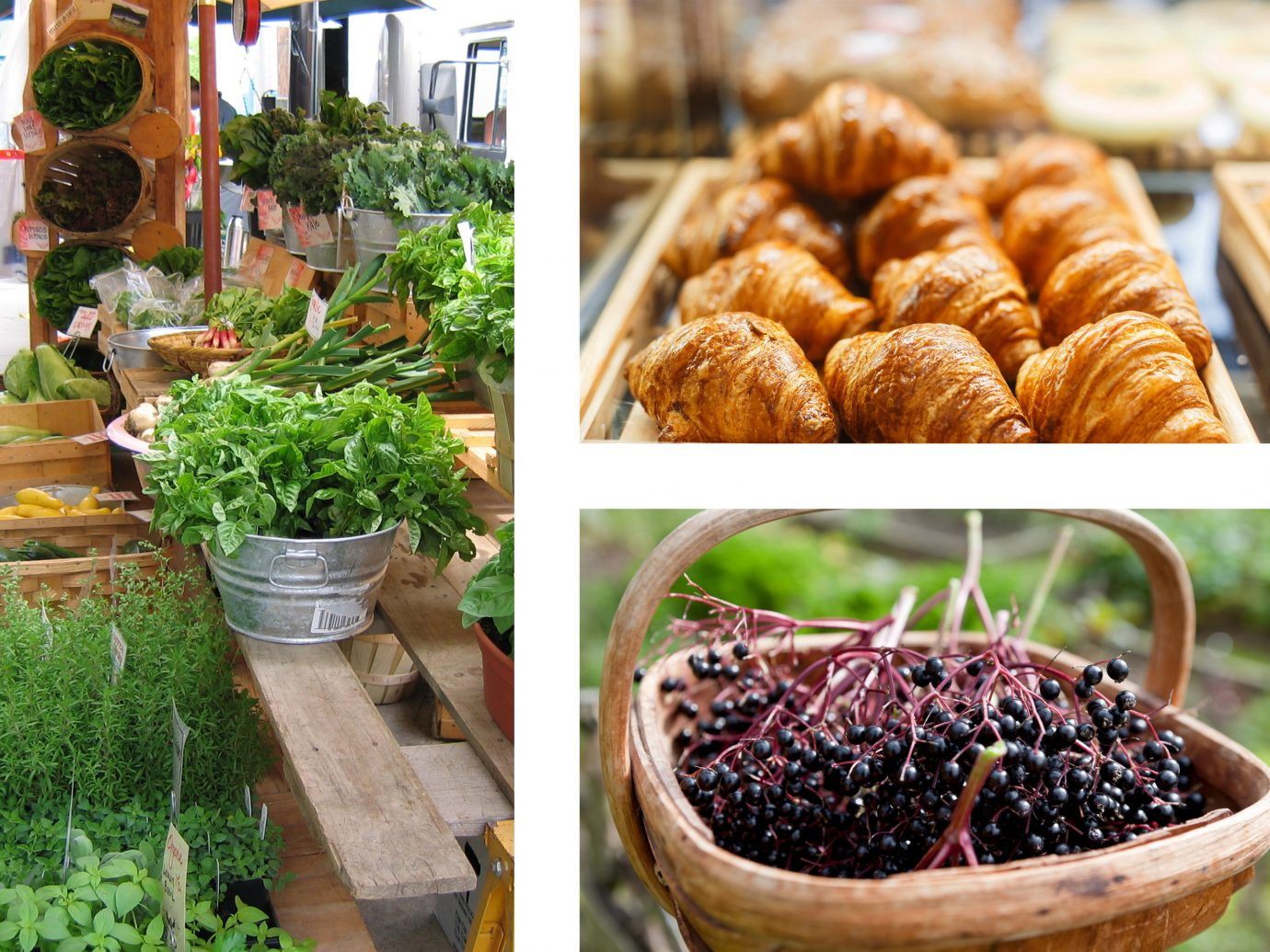 Food + Drink food different produce plant various meal fresh vegetable