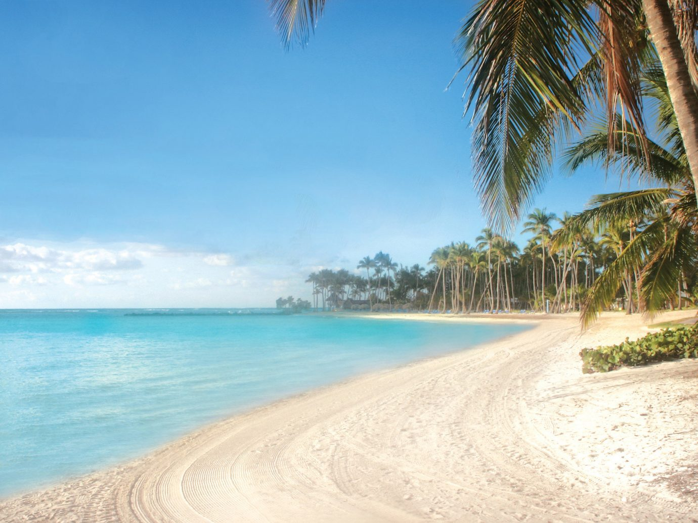 Hotels water sky outdoor tree Beach body of water Pool Sea shore palm Nature caribbean Ocean vacation Coast sand arecales tropics bay cape Lagoon Island swimming sandy lined