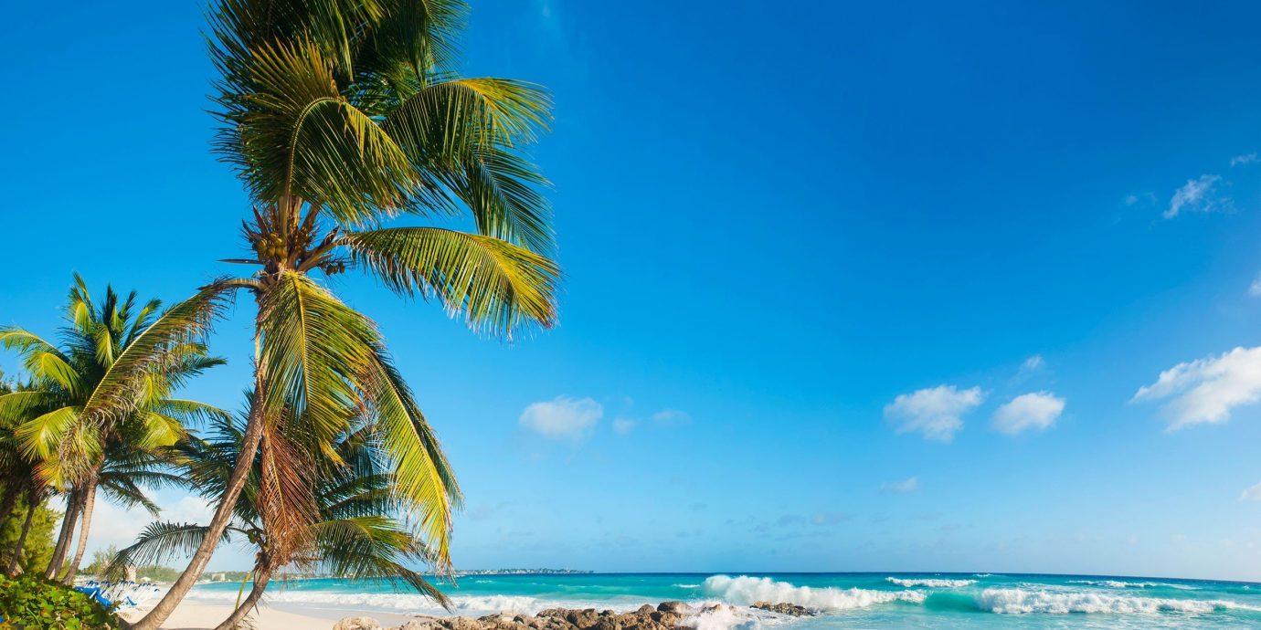 Trip Ideas sky outdoor Beach water Nature Sea Ocean body of water shore caribbean tree Coast vacation palm horizon arecales tropics Island bay palm family cape sunlight Lagoon sand sandy