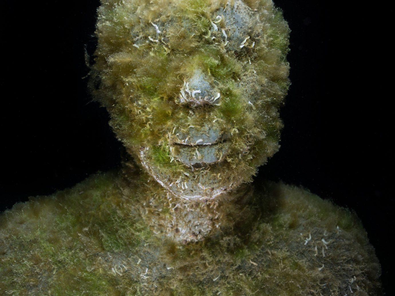 Arts + Culture Offbeat Scuba Diving + Snorkeling Trip Ideas sculpture head art ancient history statue formation close ocean floor