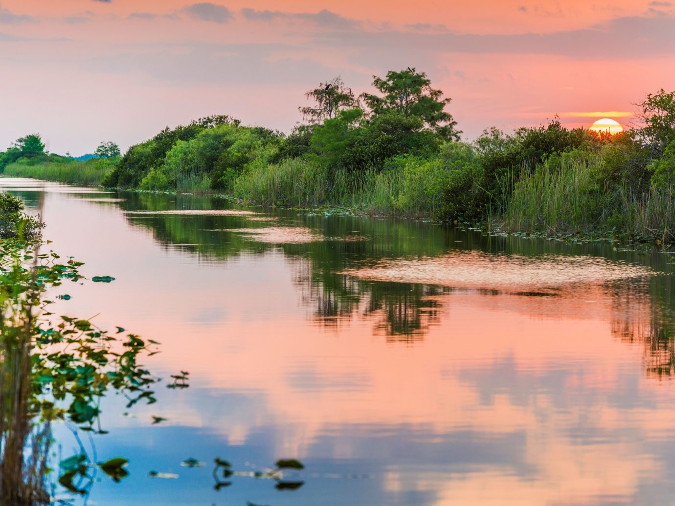 National Parks Outdoors + Adventure Trip Ideas water outdoor tree Nature River habitat reflection Lake atmospheric phenomenon natural environment wilderness body of water morning shore pond woody plant landscape wetland surrounded Sunset rural area marsh reservoir evening dawn dusk setting several