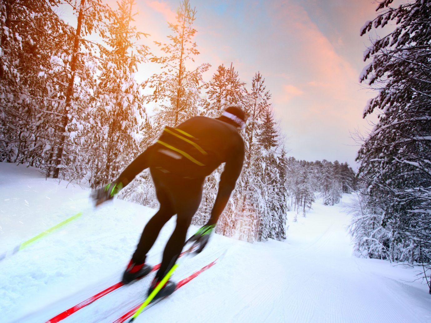 Croatia Eastern Europe europe Montenegro Slovenia Trip Ideas tree outdoor snow person skiing man sports Winter cross country skiing footwear season winter sport outdoor recreation recreation nordic skiing