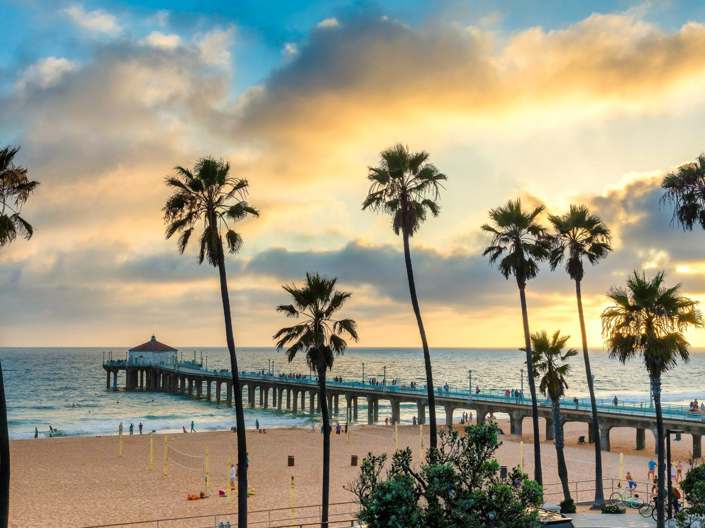 Palm trees in Manhattan Beach and pier at sunset, Los Angeles, California.