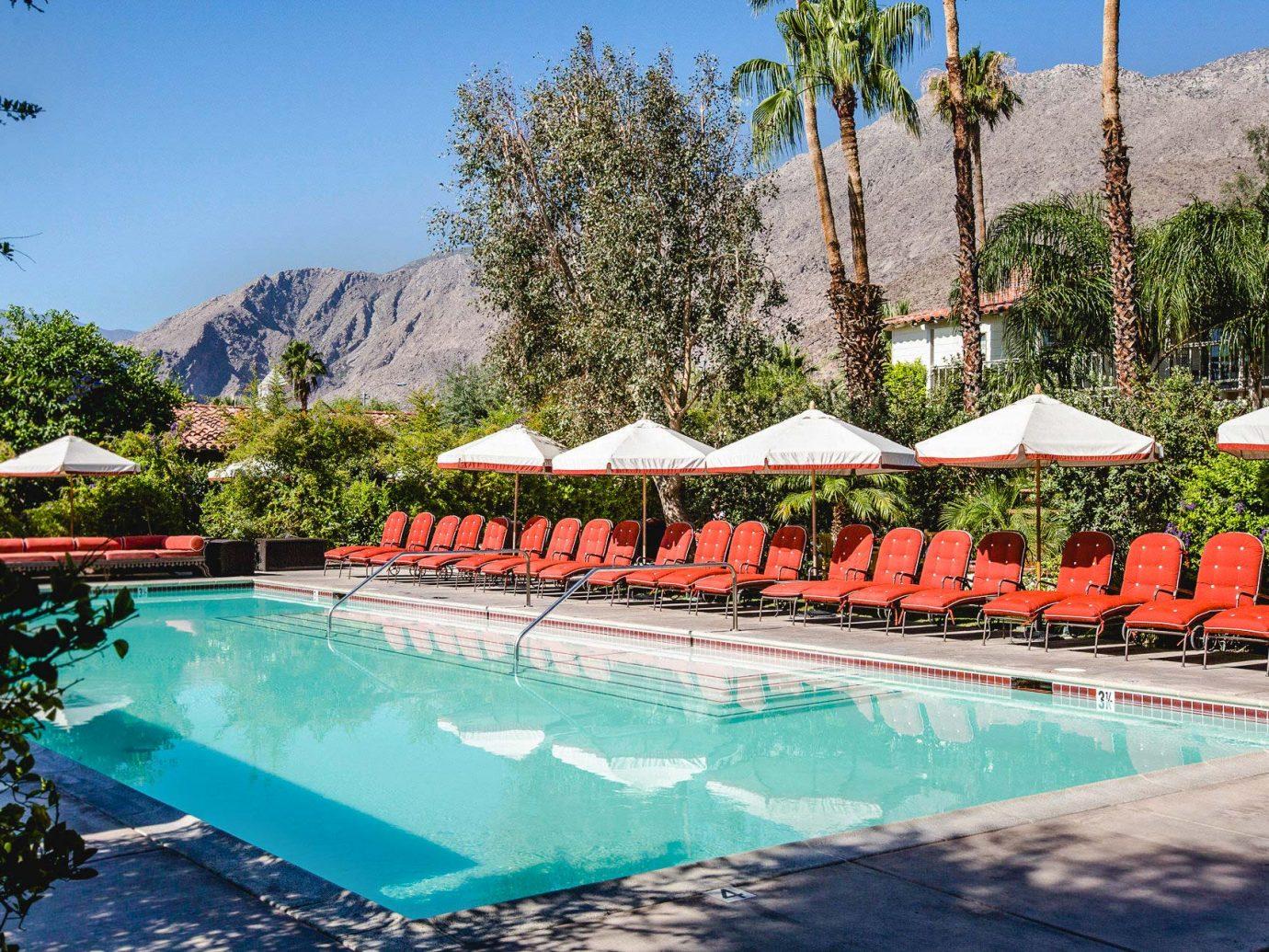 Colony Palm Hotel Pool