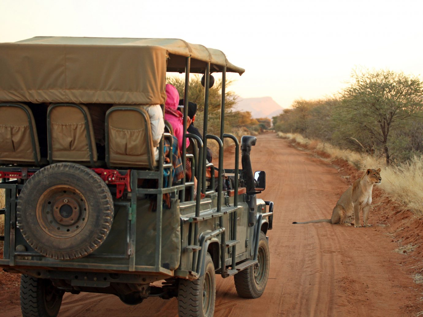 africa Honeymoon Namibia Romance Trip Ideas vehicle car motor vehicle transport Safari off roading mode of transport off road vehicle rural area soil jeep military vehicle landscape ecoregion vintage car commercial vehicle