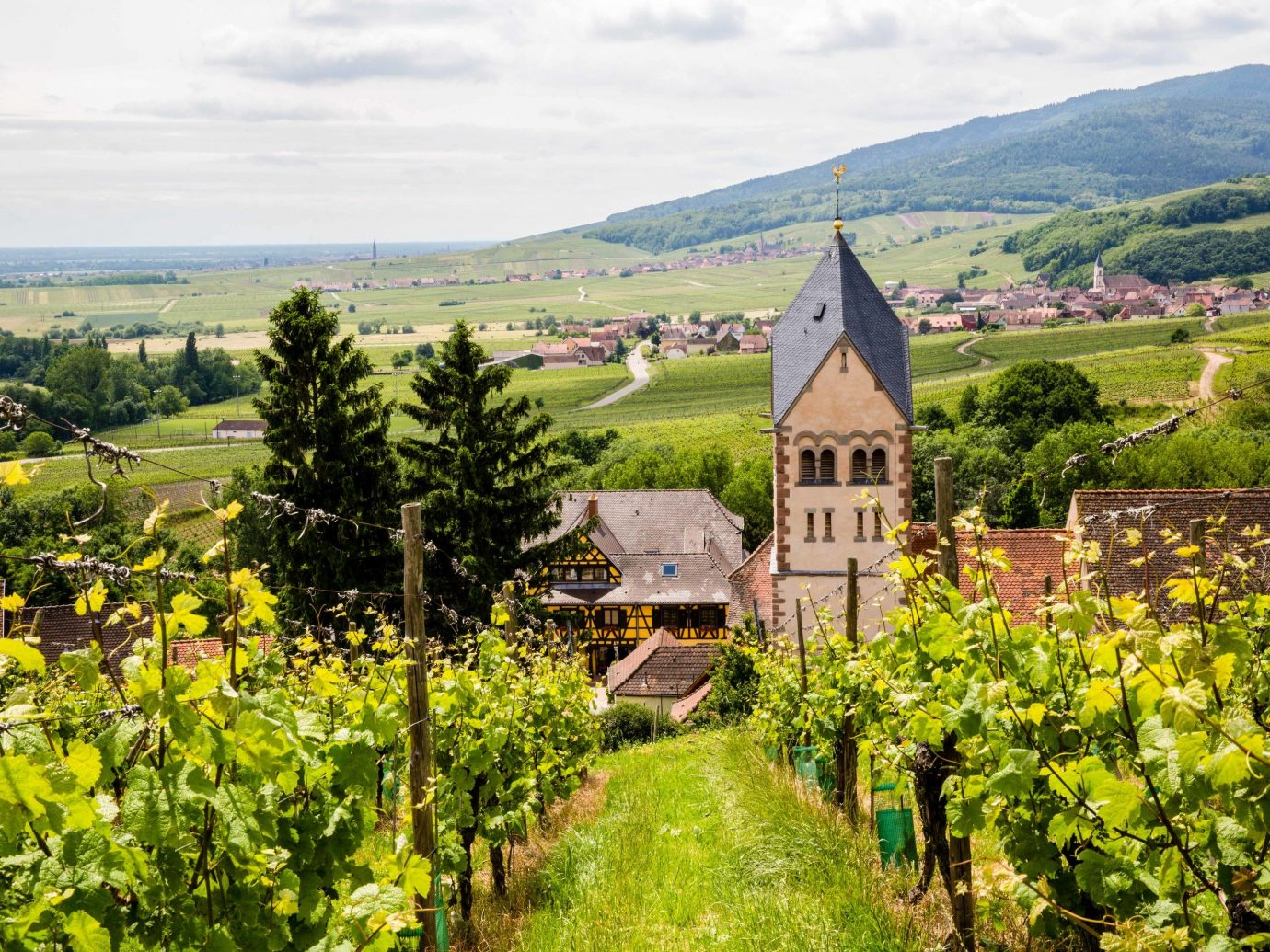 europe Outdoors + Adventure Trip Ideas agriculture mountain village Vineyard sky Village flower rural area plant field mount scenery hill estate mountain landscape tree national trust for places of historic interest or natural beauty house cottage meadow Farm tourism mountain range