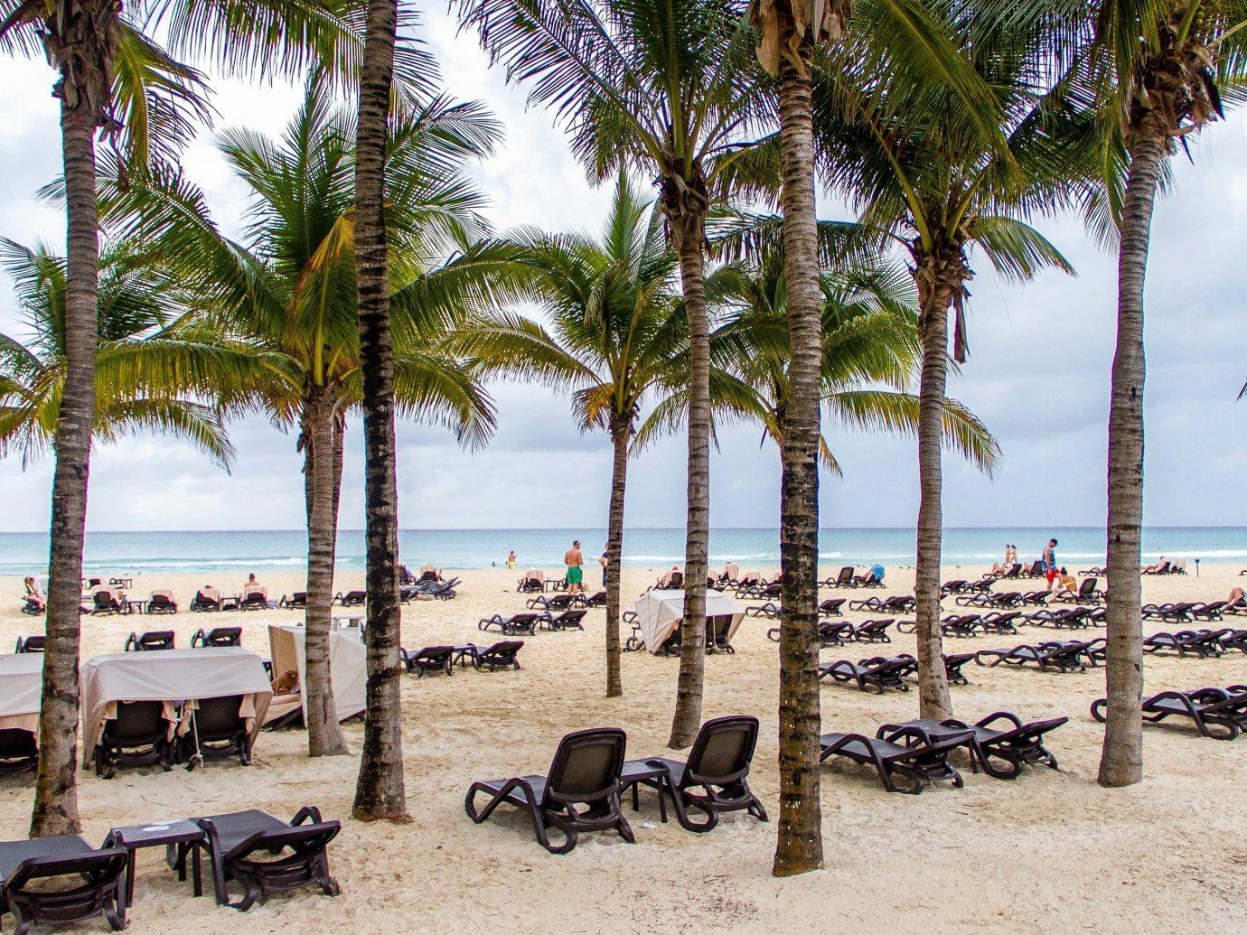 All-inclusive All-Inclusive Resorts Mexico Riviera Maya, Mexico Beach arecales palm tree tree Resort tropics vacation shore tourism plant caribbean Sea sky sand coconut