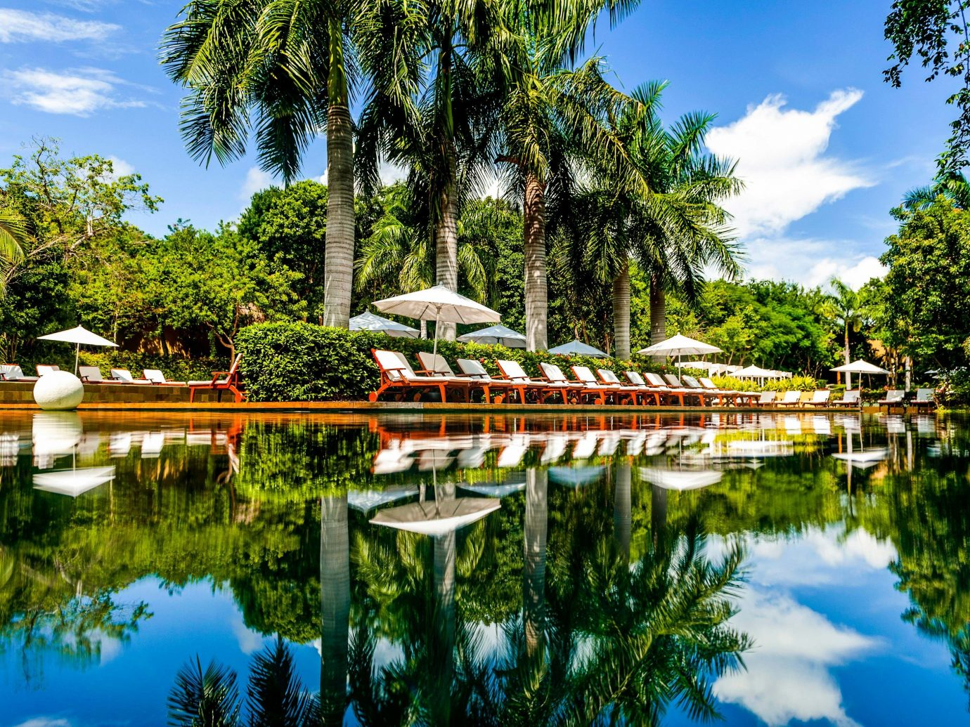 All-inclusive All-Inclusive Resorts Hotels Mexico Riviera Maya, Mexico Trip Ideas reflection water Nature waterway tree sky plant tourist attraction leaf leisure Lake pond Resort landscape bayou tourism botanical garden Canal reflecting pool estate arecales palm tree bank Garden watercourse