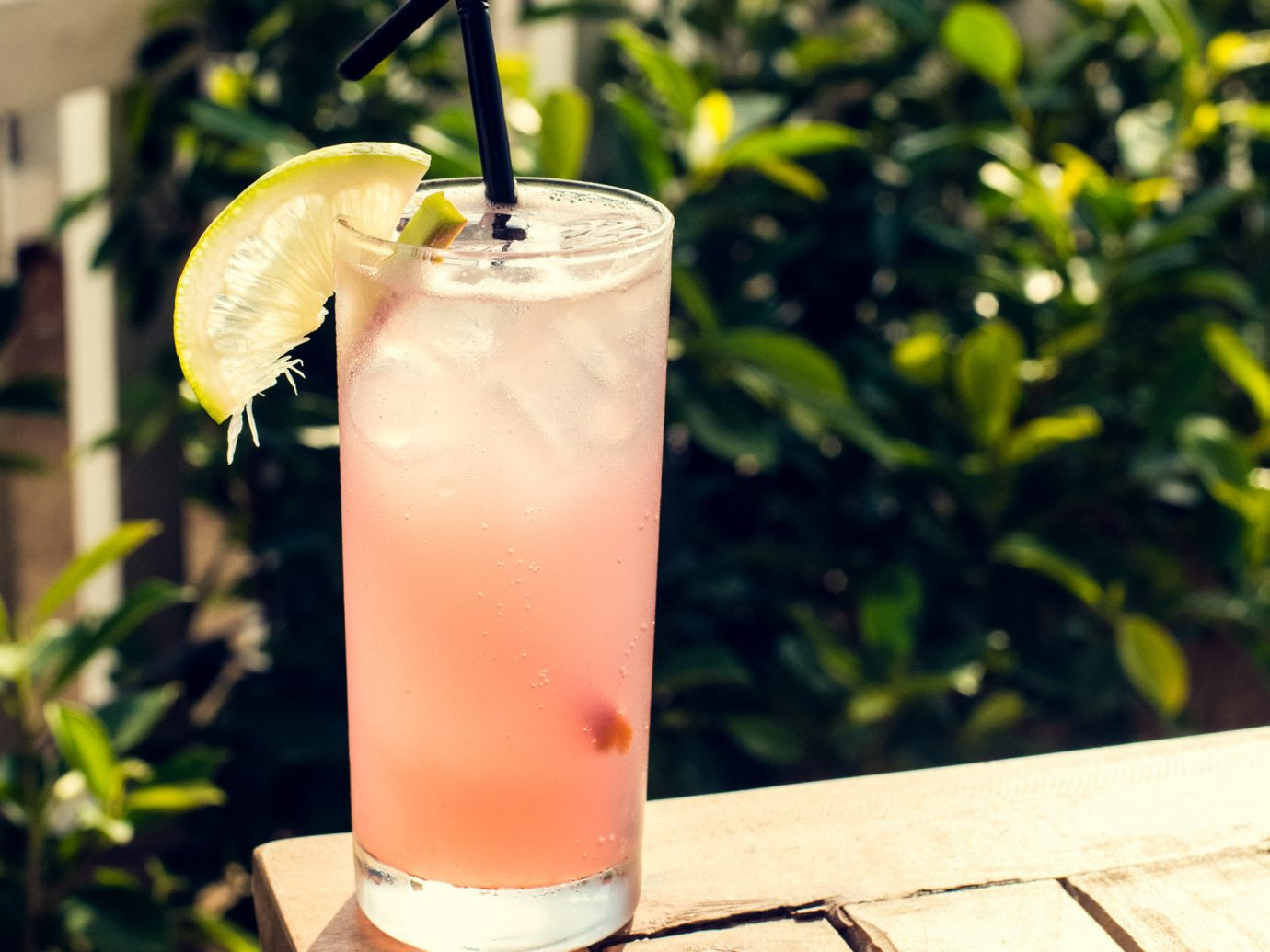 Drink outdoor food beverage non alcoholic beverage bay breeze cocktail garnish cocktail mai tai juice singapore sling lemonade sex on the beach batida limeade fruit drink