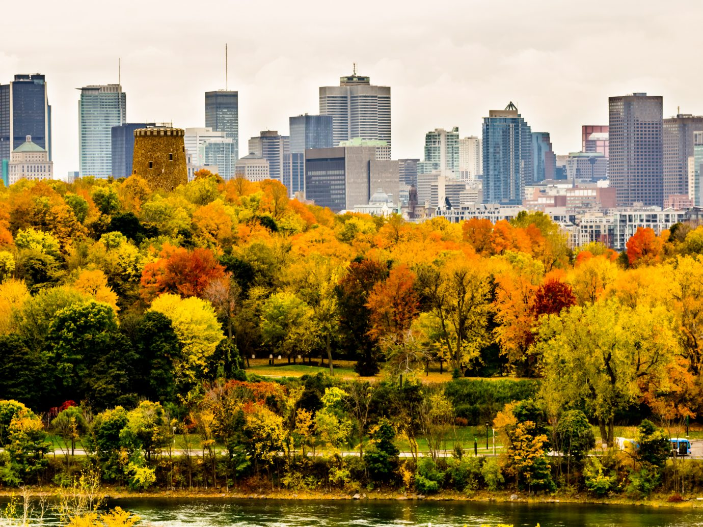 Montreal downtown skyscrapers in autumn