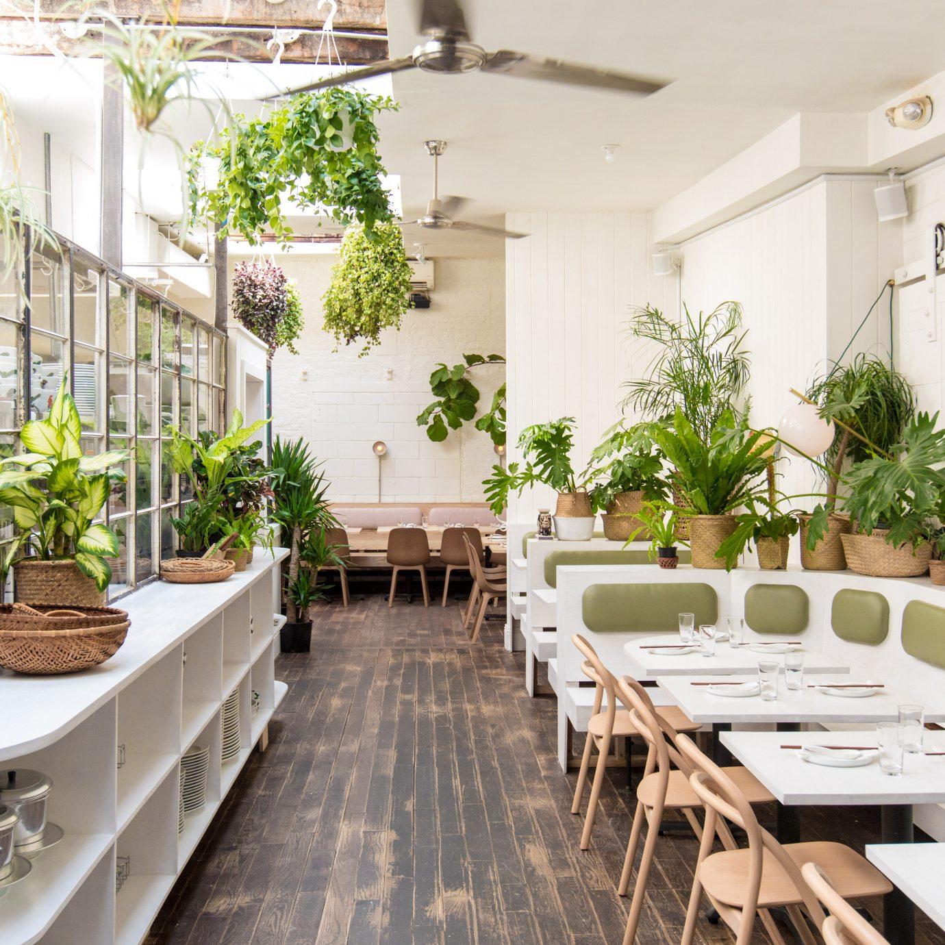 Interior at Đi Ăn Đi, Best New Restaurants in NYC