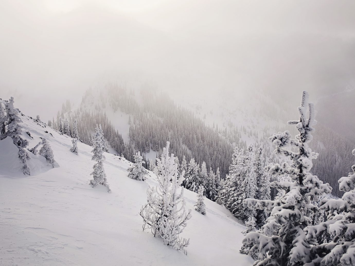 Winter view from Crystal Mountain, Washington State
