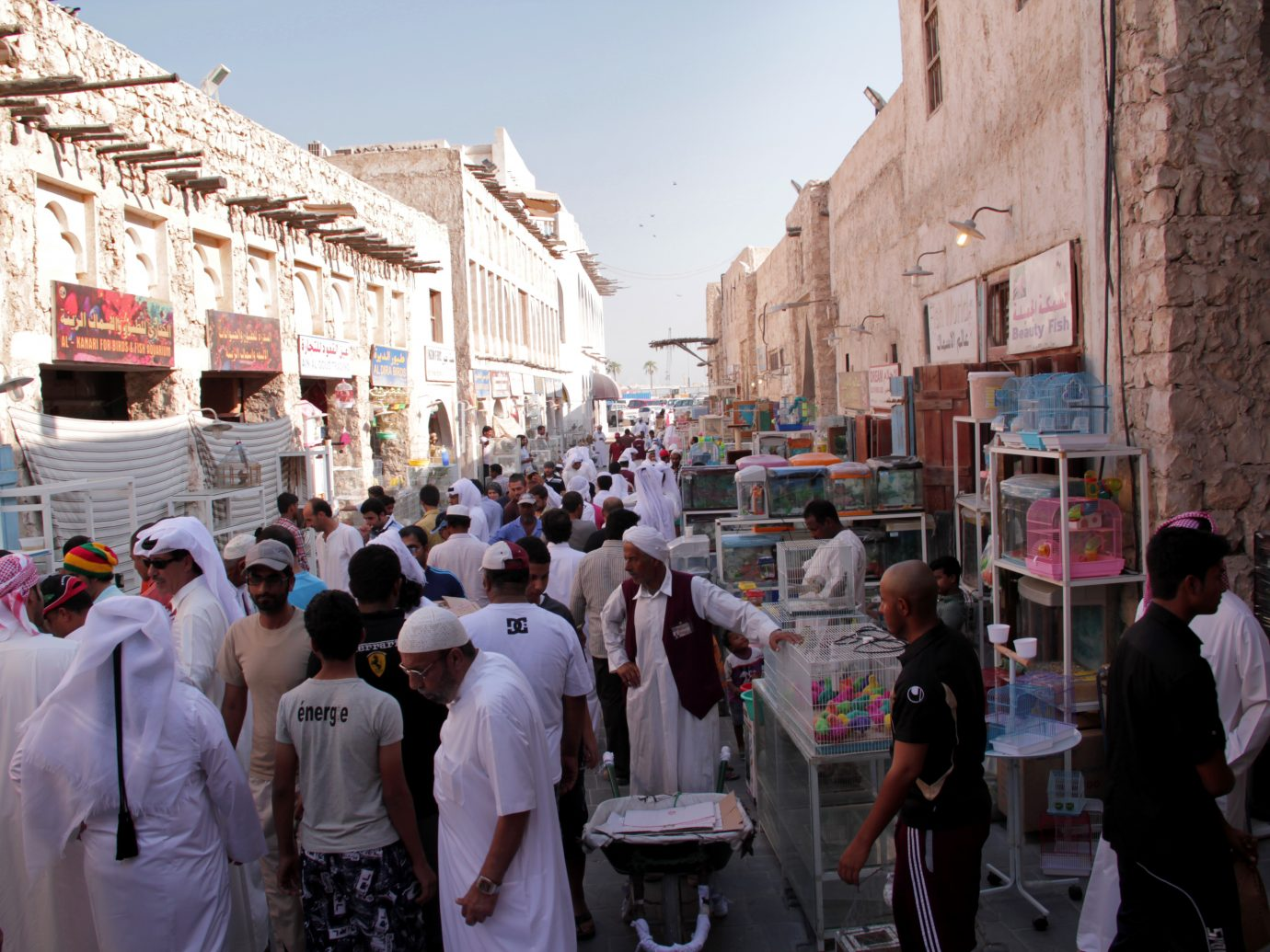 The Pets Market, Souq Waqif