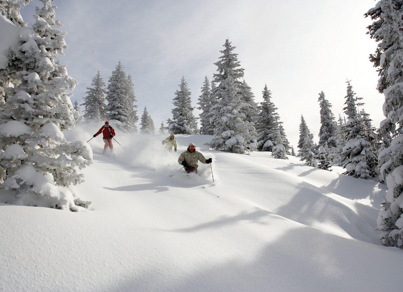 Skiing in Salt Lake City