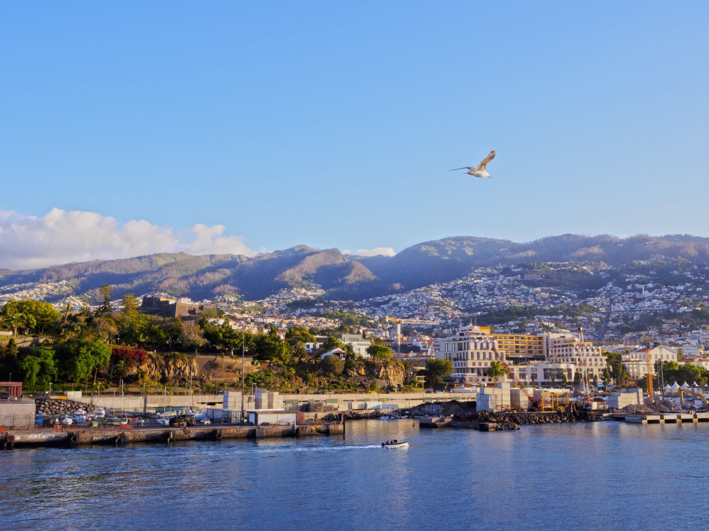 Portugal, Madeira, Funchal, Cityscape viewed from the ferry leaving the port.