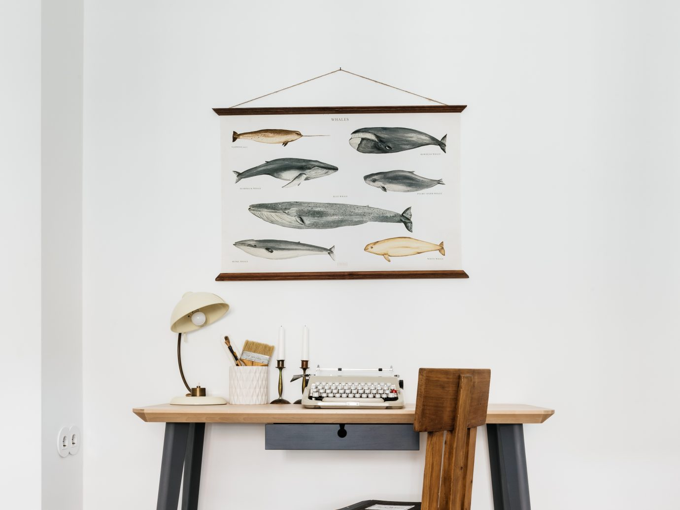 A hip, antique desk area with second hand, stylish furniture and a wall decoration featuring different fish drawings