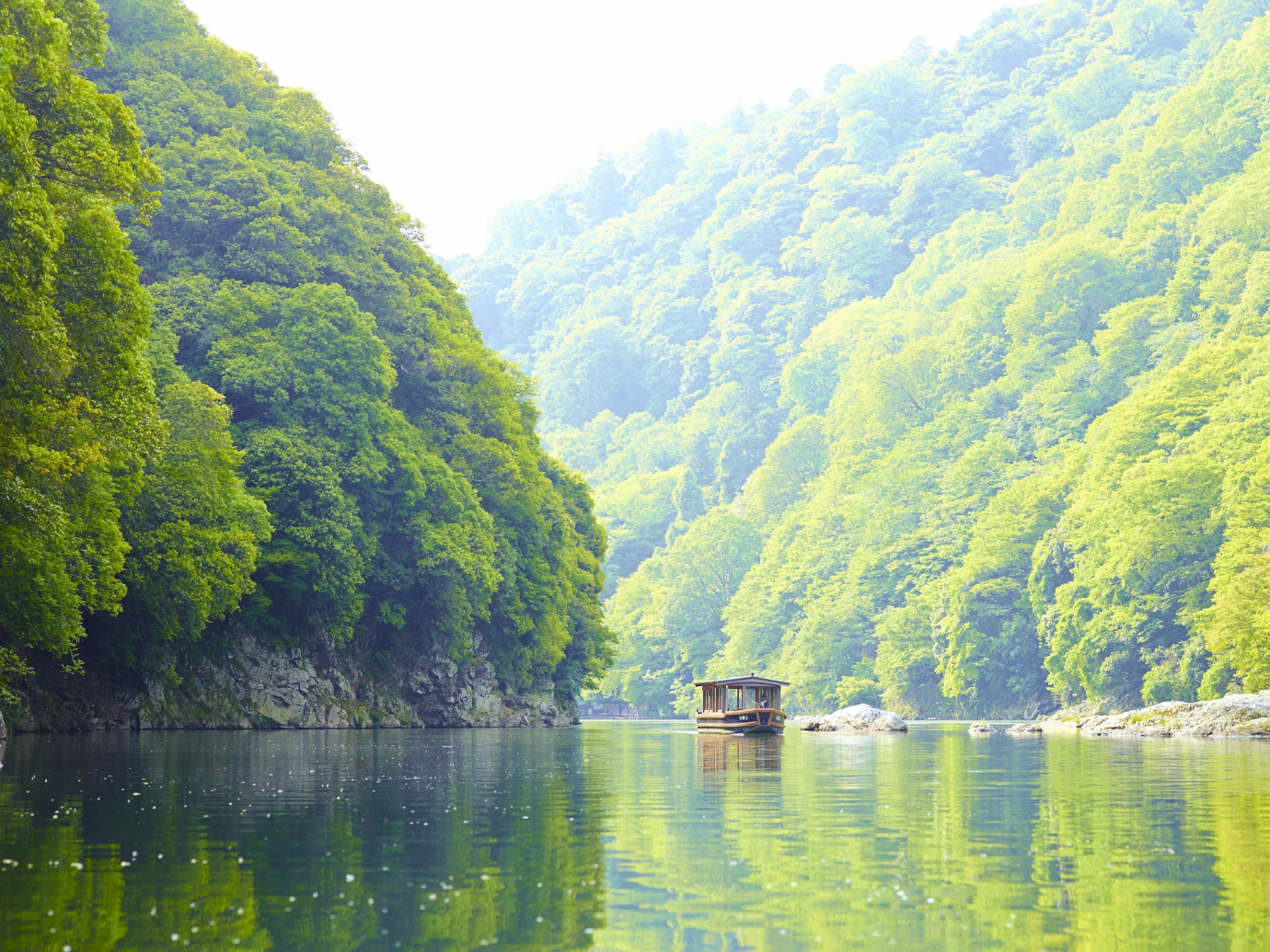 Lush green trees surrounding water way with a boat riding down