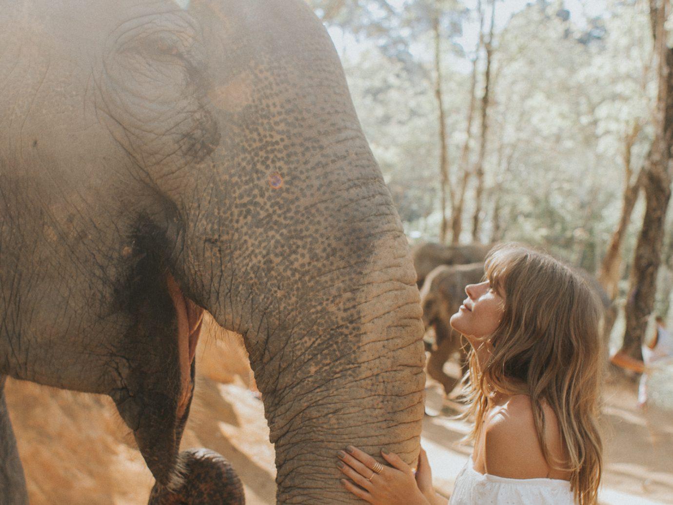 Girl with an elephant