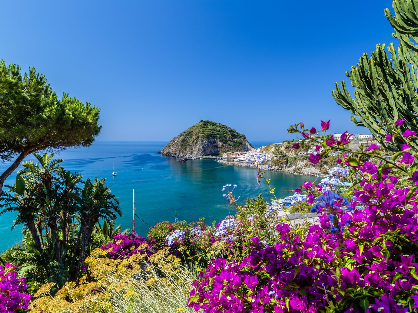 A view of Sant'Angelo in Ischia island in Italy: Tyrrhenian sea, bougaiunvillea glabra, rocks, water, umbrella, sand and old typical houses in the island in front of Naples in Campania region in a sunny day