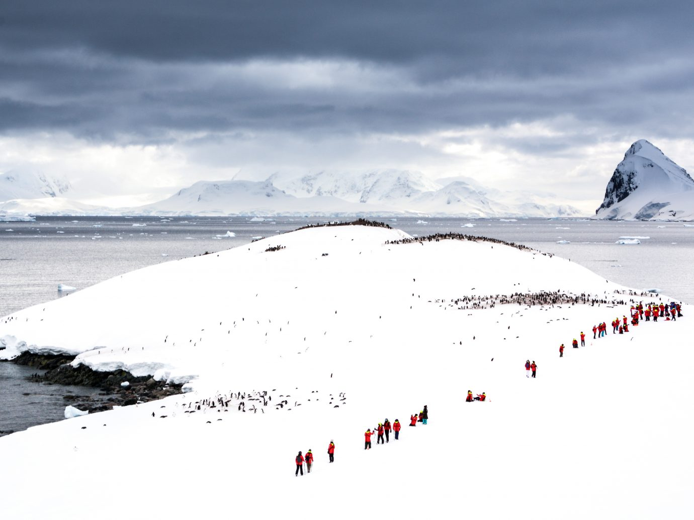 Tourists and Penguins on Cuverville Island