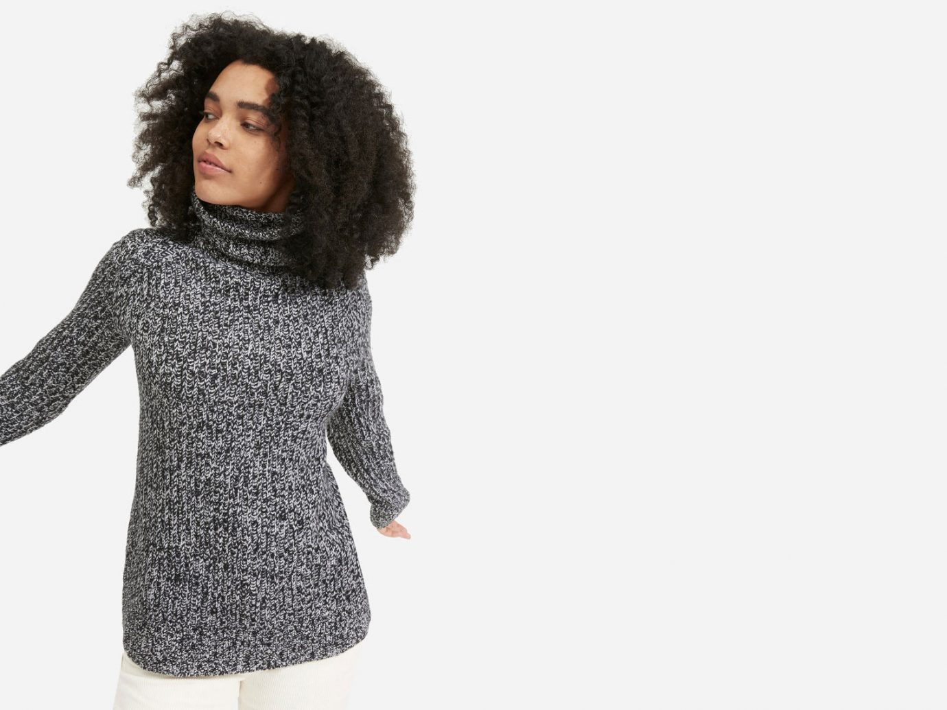 Everlane The Italian Soft Wool Rib Turtleneck