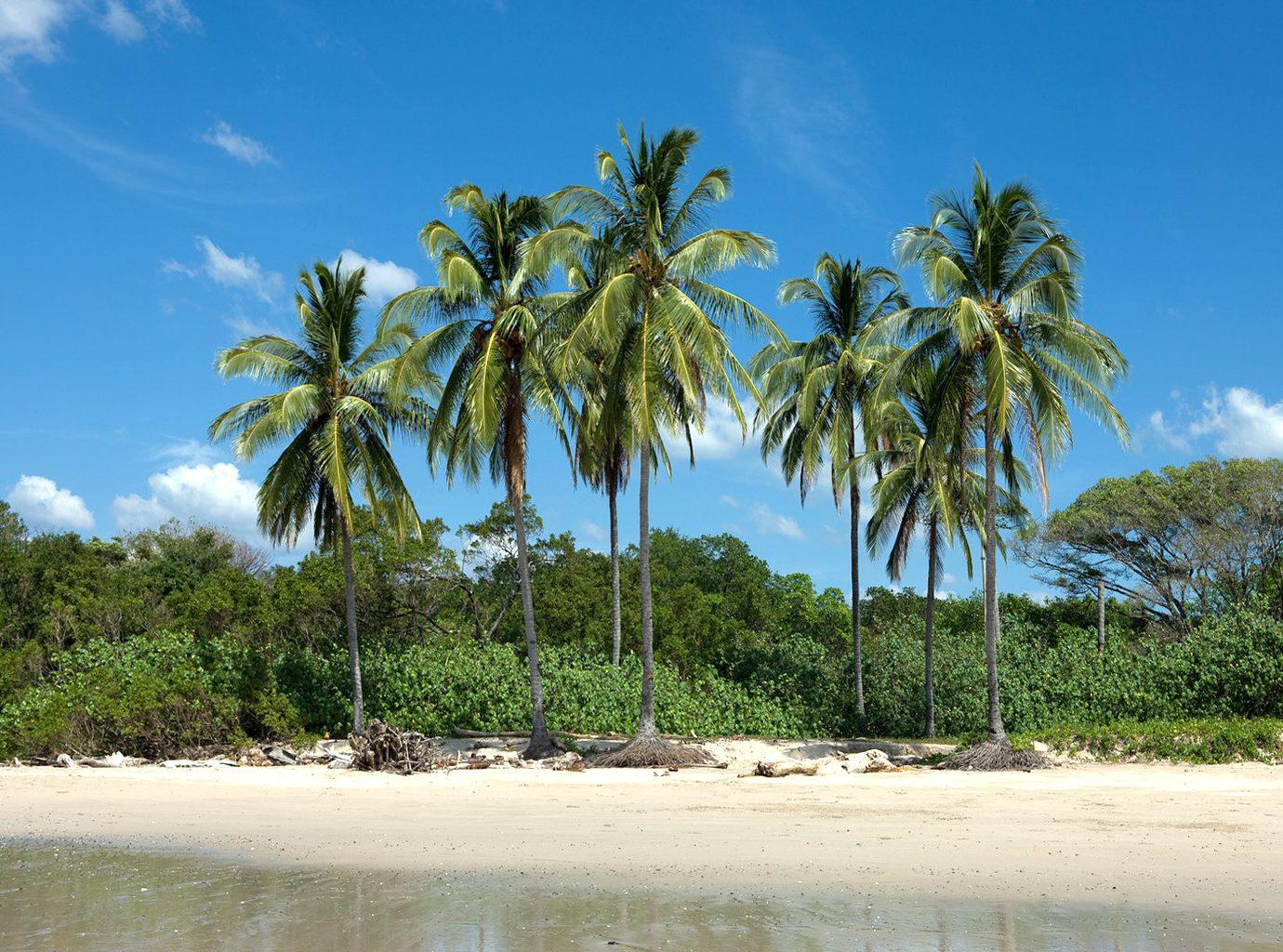 Beach at the Harmony Hotel in Costa Rica