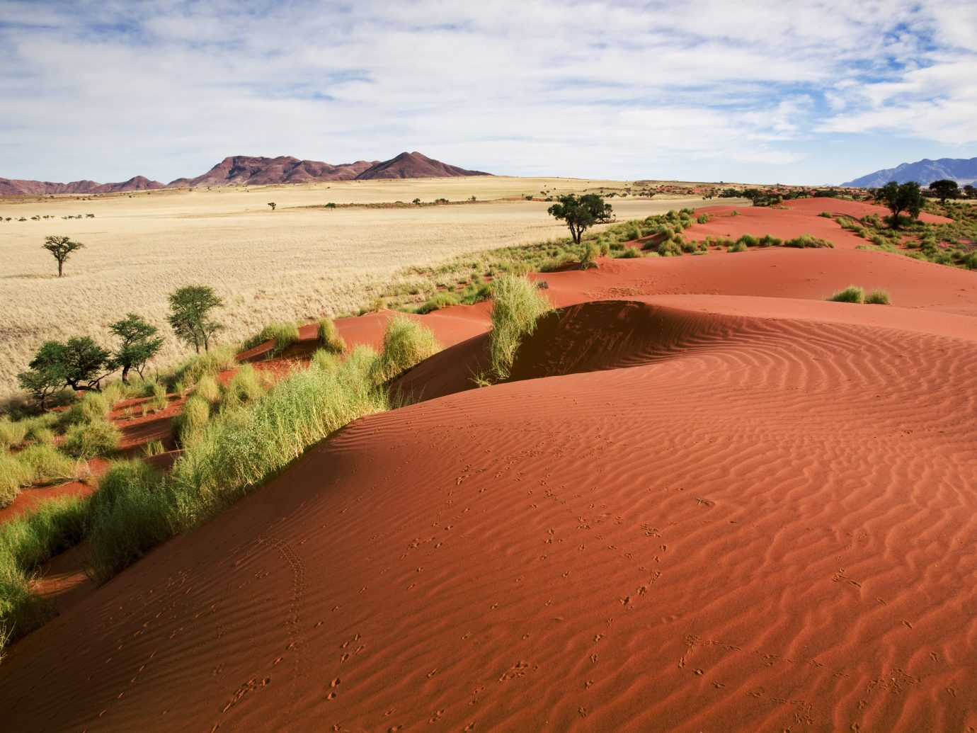 prairie landscape and sand dunes in Namibia, South West Africa.
