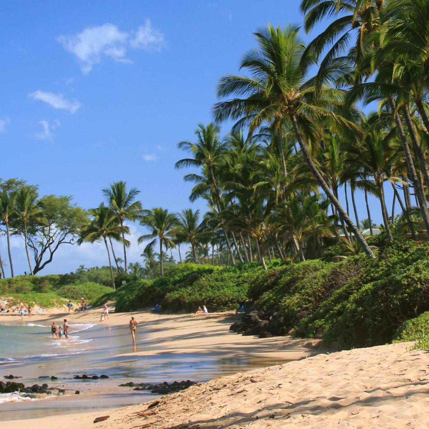 A beach in Maui Hawaii