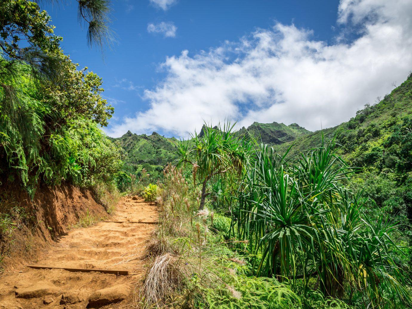 Kalalau Trail on the island of Kauai, Hawaii