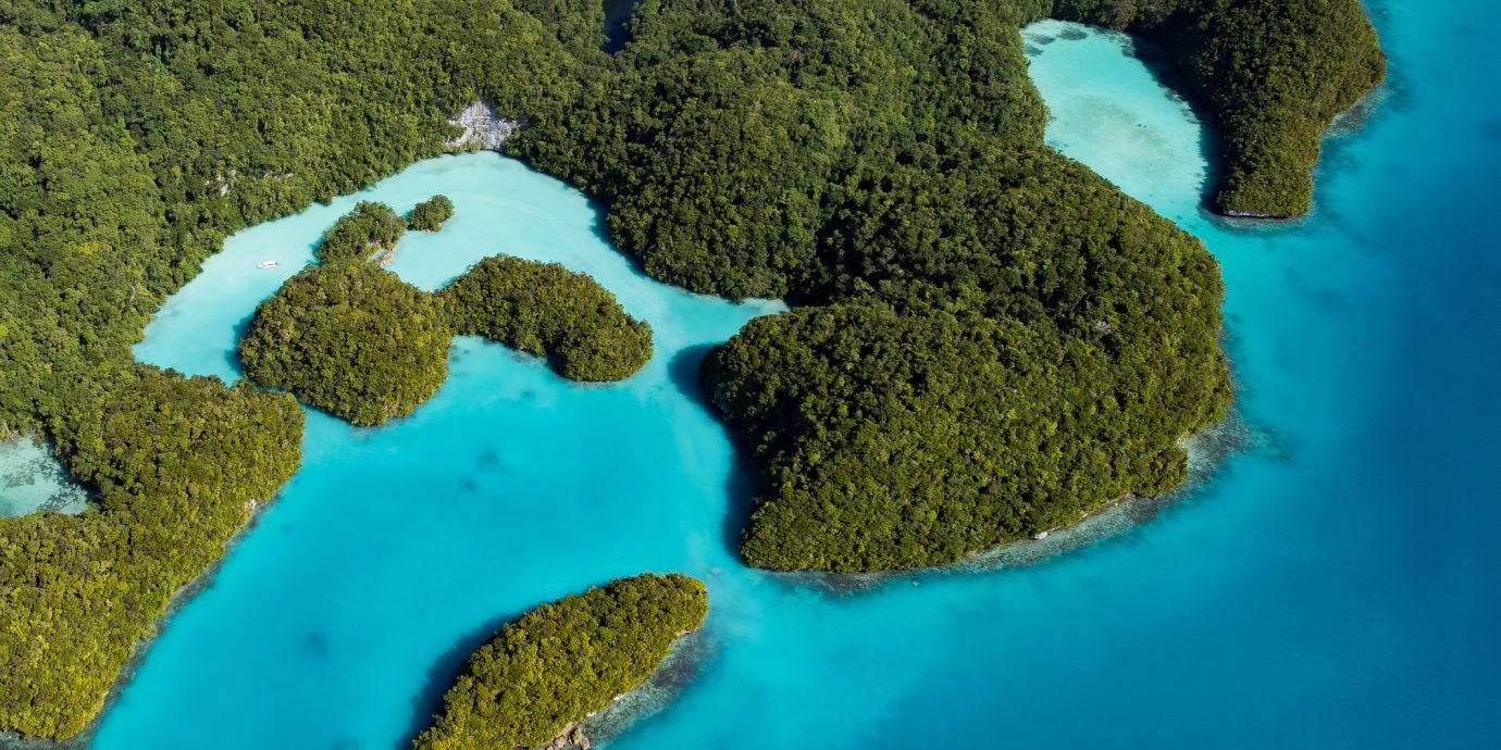 Palau Milky Way (Cove of natural luxury cosmetics)