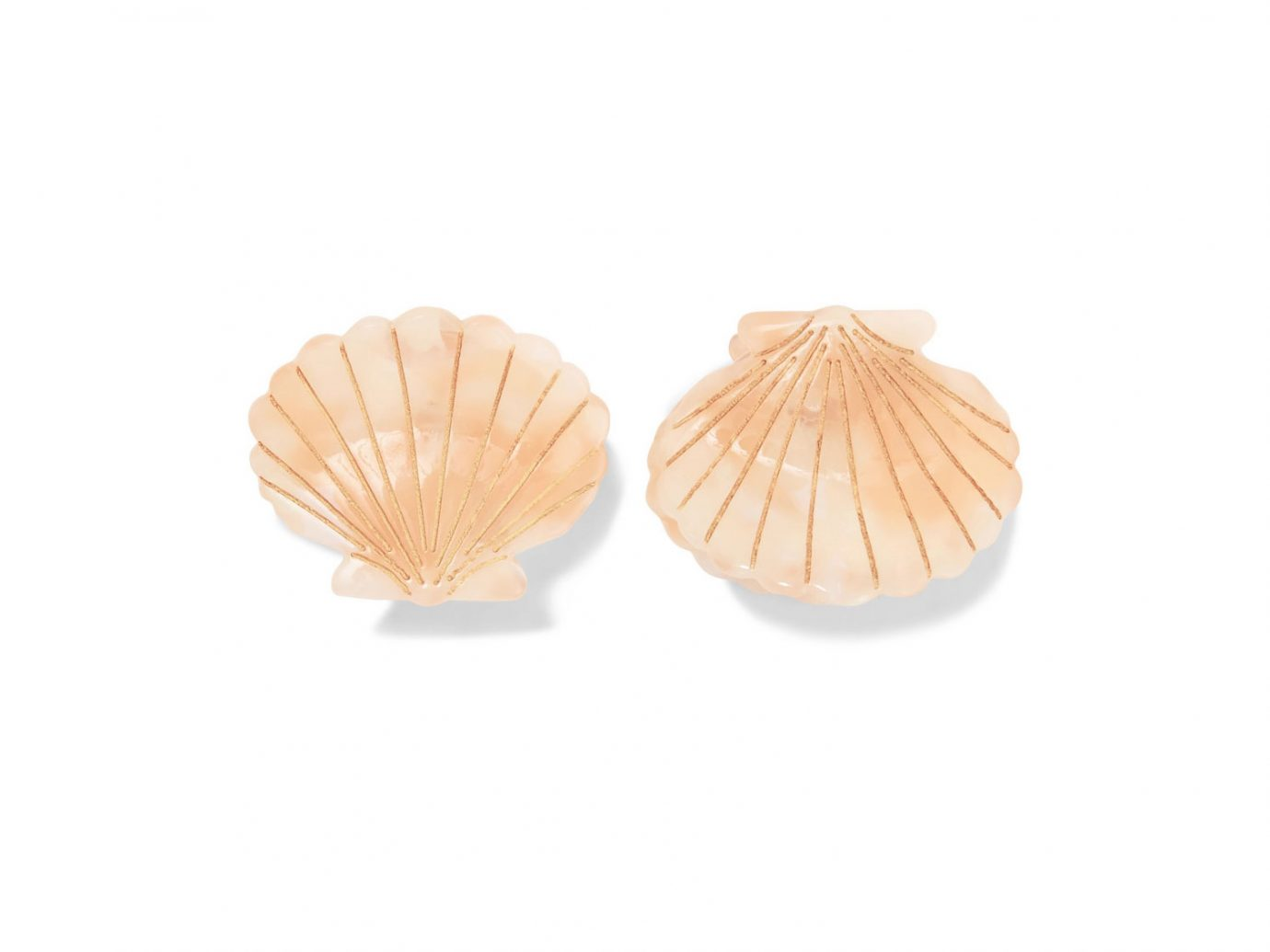 Valet Ursula set of two resin hair clips