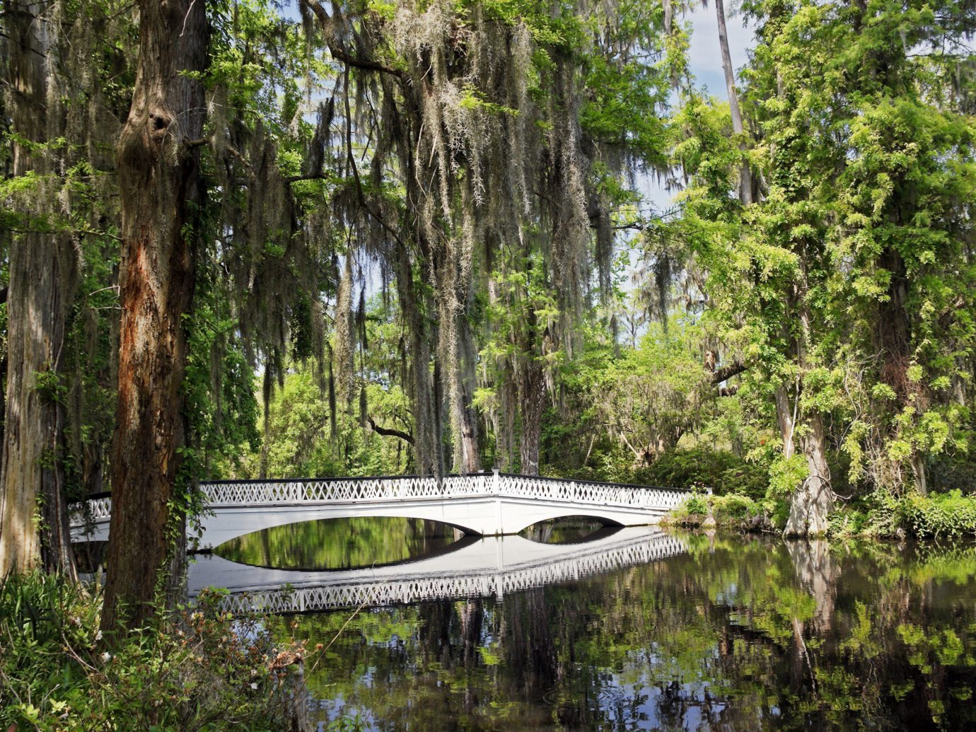 Charleston Magnolia Plantation White Bridge